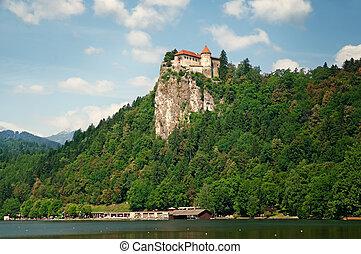Bled castle, Slovenia - Bled castle above Lake Bled in ...