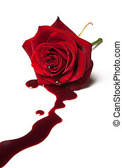 Red rose with blood flowing out of its heart