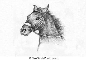 Bleistift Zeichnung Von A Pferd Illustrationen Und Clip Art 31