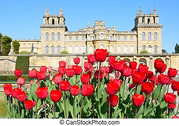 Blenheim Palace with red tulips in