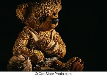 blessé, ours, teddy