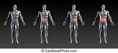 blessure, abdominal