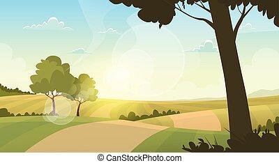 bleu, été, ciel, vert, route, rural, herbe, coucher soleil, paysage, vue
