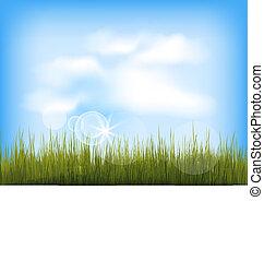 bleu, été, nuages, ciel, herbe, arrière-plan vert