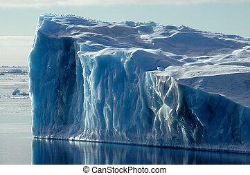 bleu, antarctique, iceberg