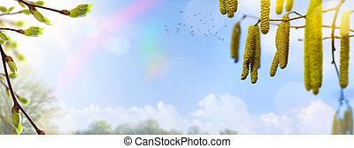 bleu, arrière-plan;, tree;, fleur, printemps, ciel, fleurs