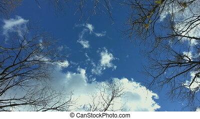 bleu, au-dessous, ciel