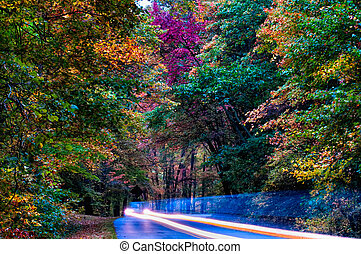 bleu, automne, route express, arête, conduire