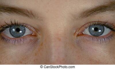 bleu, beaux yeux, femme, isolé, jeune