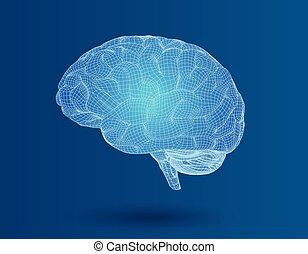 bleu, bg, wireframe, cerveau, vue, côté, 3d
