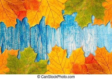 bleu, bois, feuilles, cadre, fond