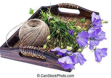 bleu, bois, fleurs, plateau, sauvage