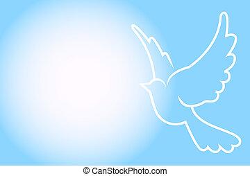 bleu, cadre, vecteur, colombe