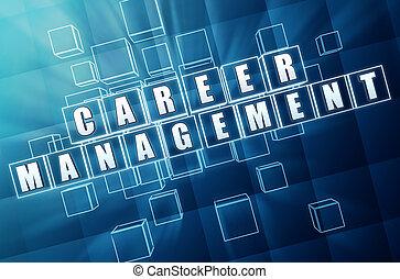 bleu, carrière, gestion, cubes, verre