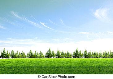 bleu, champ, arrière-plan vert, ciel