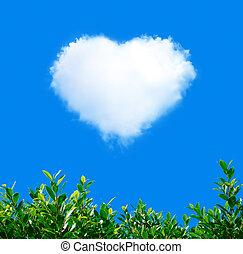 bleu, coeur, plante, ciel, forme, vert, nuage