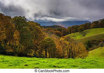 bleu, collines, couleur, automne, parc, r, cône, rouler, moïse