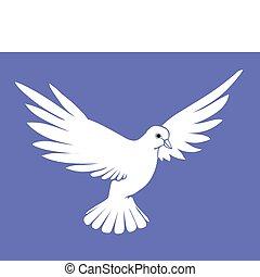 bleu, colombe, vecteur, silhouette, fond