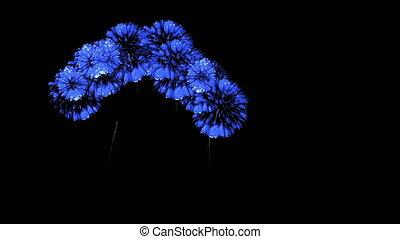 bleu, coloré, spectaculaire, render., feux artifice, firecrakers, version, 48, night., 3d