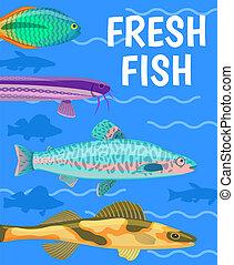 bleu, couleur, fish, illustration, eau, vecteur, frais