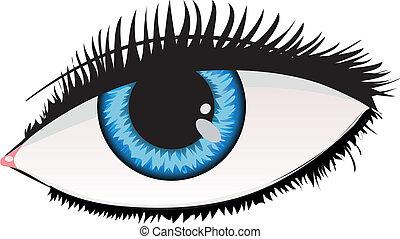 bleu, couleur, oeil femme