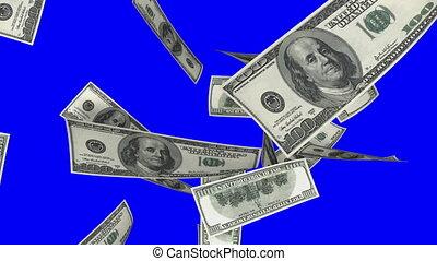 bleu, dollars, éboulis, tomber, (loop