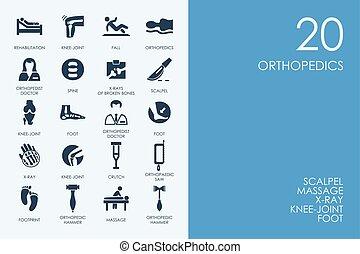 bleu, ensemble, icônes, bibliothèque, orthopédie, hamster