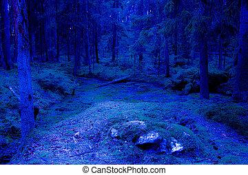 bleu, fantasme, crépuscule, forêt