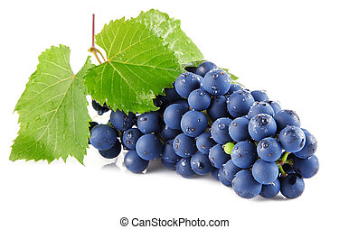 bleu, feuilles raisin, isolé, fruits, blanc