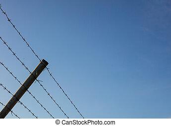 bleu, fil fer barbelé, ciel clair, contre