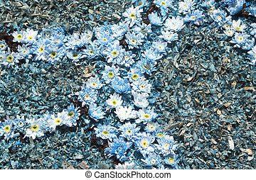 bleu fleurit, bis