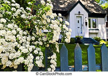 bleu, fleurs blanches, barrière