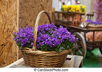 bleu, fleurs ressort, panier, violet
