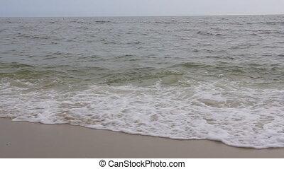 bleu, géant, lent, hawaï, cassant vague, mouvement, océan