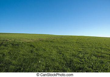 bleu, herbe, ciel, vert