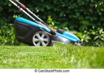 bleu, herbe pelouse, vert, faucheur