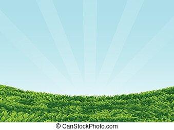bleu, herbeux, background-vector, ciel, illustration, champ