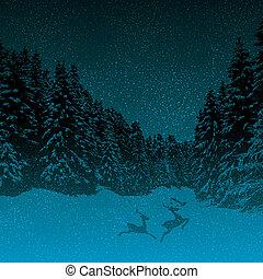 bleu, hiver, sombre, forêt, fond, nuit