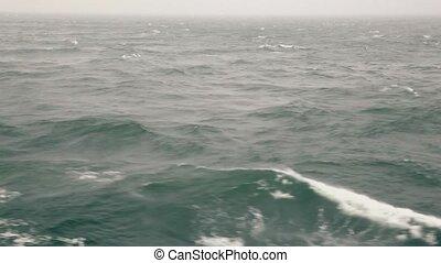 bleu, horizon, marine, ciel, surface, eau, ondulé, pur