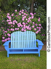 bleu, jardin, chair.