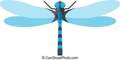 bleu, libellule, imperator, mâle, illustration., nature,...