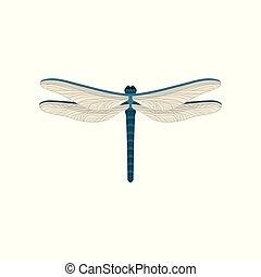 bleu, libellule, paires, plat, voler, deux, wings., grand, vecteur, conception, insect., petit, transparent