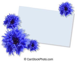 bleu, message-card, fleurs, groupe