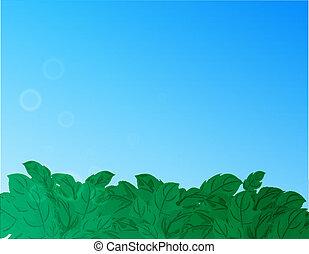 bleu, nature, ciel, arrière-plan vert, herbe