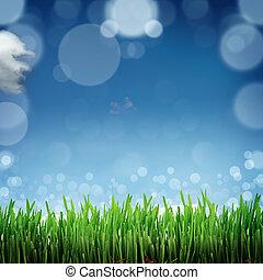 bleu,  nature, Printemps, ciel, dos, fond, herbe