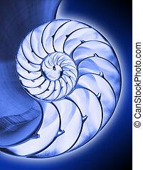 bleu, nautilus2