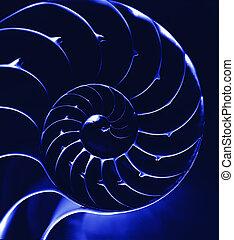 bleu, nautilus4