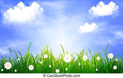 bleu, nuages, ciel, fond, herbe, pâquerettes