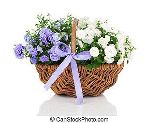bleu, osier, campanule, panier, iso, terry, fleurs blanches