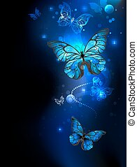 bleu, papillon, dans noir